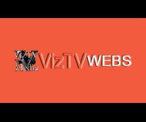 VizTV Webs - Ad Mockup - 300x250